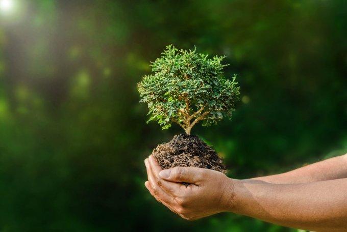 Биоразнообразието и опазването му – новата стратегия на Европейския съюз